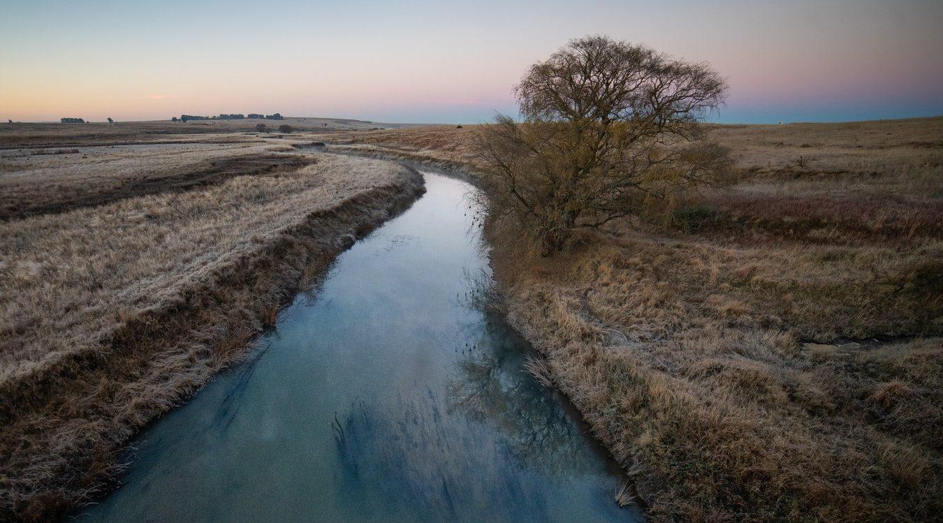 Stream in Field
